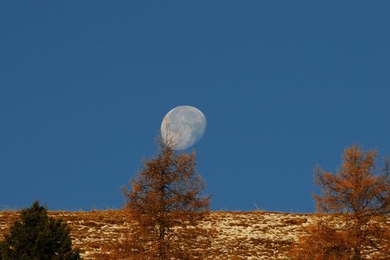 mattino presto in localita Prada - San lorenzo in banale (2666 clic)