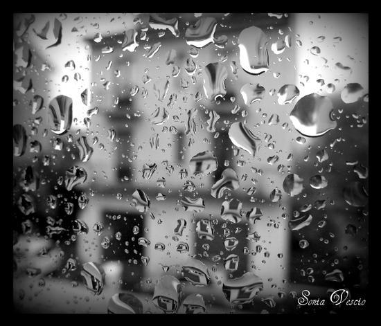In un giorno di pioggia... (983 clic)