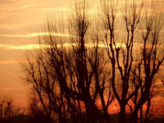 tramonto........ - Milano (1998 clic)