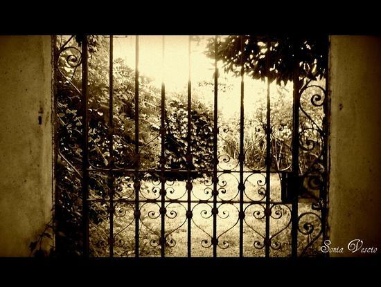 il giardino segreto.... (758 clic)