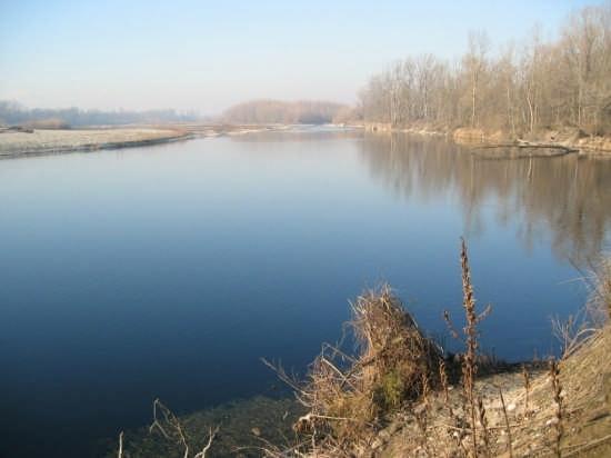 Ticino, fiume azzurro - Sedriano (3441 clic)