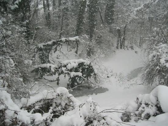 Neve a Sedriano (2586 clic)