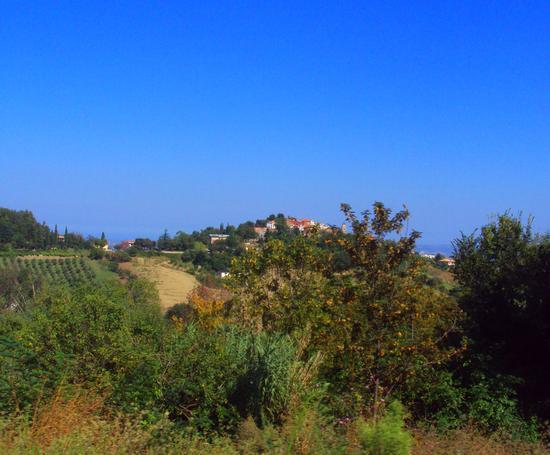 Vestea - Civitella casanova (965 clic)