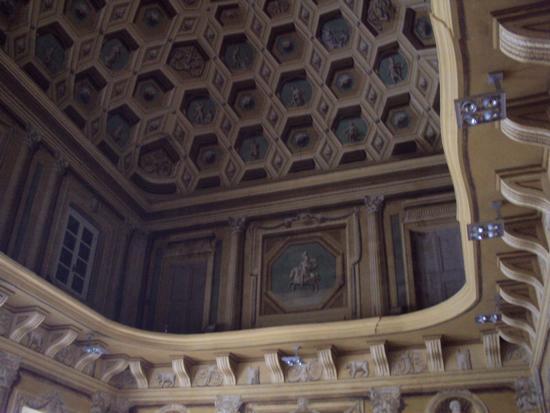 il soffitto della Biblioteca - Reggiolo (1827 clic)