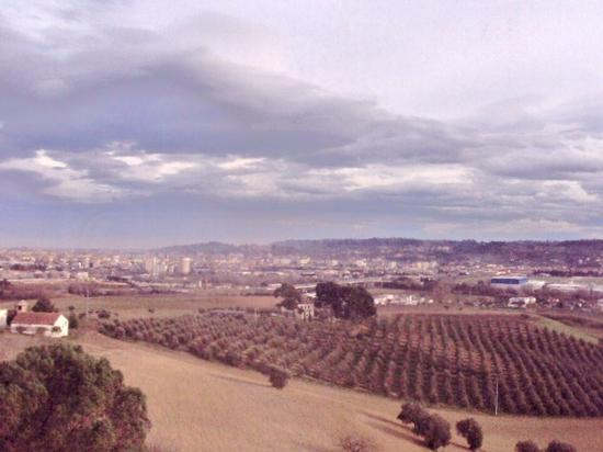 Tecnica e natura. - Pescara (2174 clic)