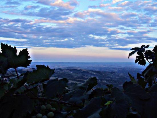 ....dal terrazzo - Villa celiera (934 clic)