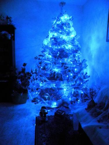 Natale in casa mia......è una MAGIA!!!!! - Novoli (1774 clic)