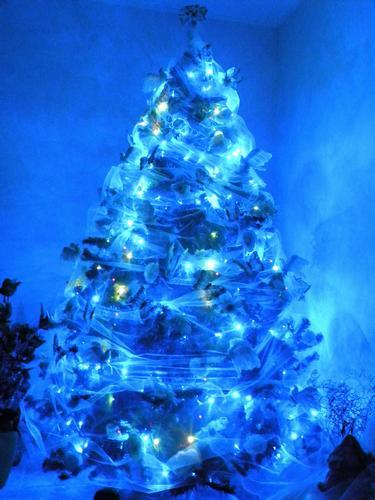 mt 2,60 x sentirmi immersa nella magia del Natale!!! - Novoli (2001 clic)