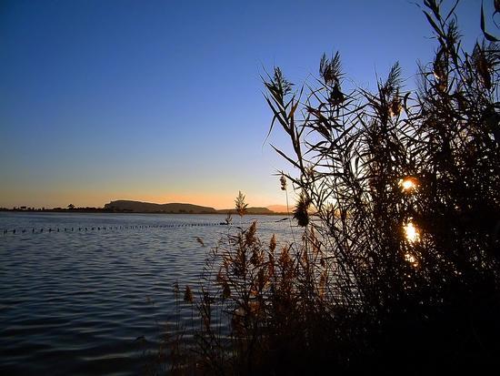 Le saline al tramonto - Quartu sant'elena (3983 clic)