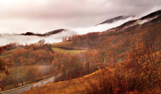 La nebbia che avvolge la collina... (366 clic)