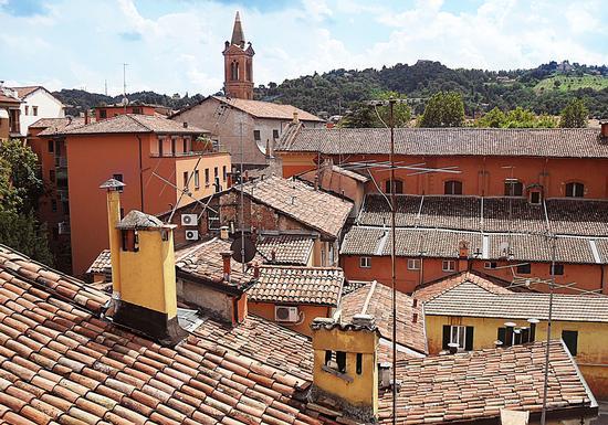 I tetti di Bologna (2385 clic)