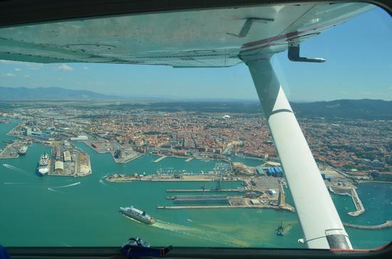 Volando sul porto - Livorno (1435 clic)