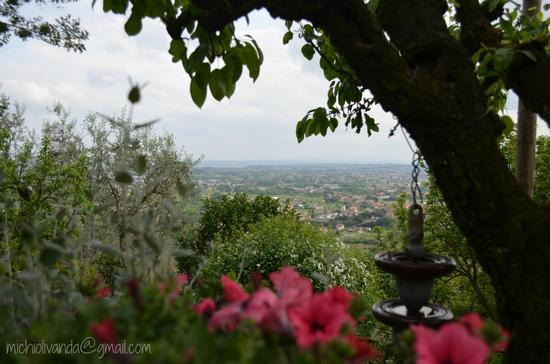 Buggiano Castello - La campagna dentro le mura 2013 (1134 clic)