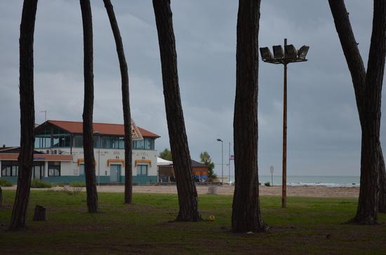 Come a Cuba - MARINA DI CARRARA - inserita il 12-Feb-13