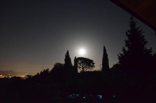 La luna di Buggiano da Olivanda (1242 clic)