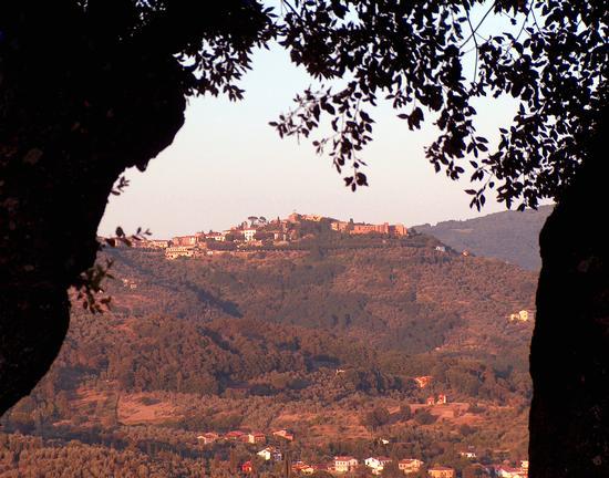 Vista da Buggiano Colle (2282 clic)