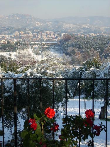 Buggiano e Montecatini nella neve (2219 clic)