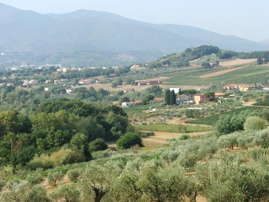 Panorama sulle verdi colline toscane - CAPANNORI - inserita il 06-Oct-10