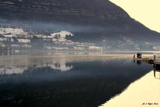 Riflessi sul lago - Spinone al lago (661 clic)