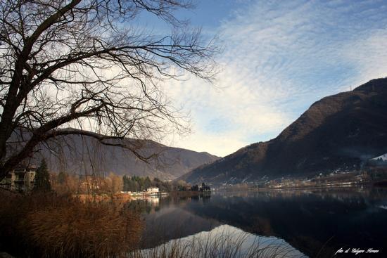 Riflessi sul lago - Spinone al lago (678 clic)