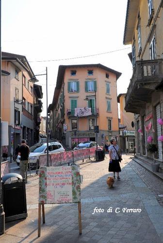 GAZZANIGA IN ATTESA DEL GIRO D'ITALIA    2011 (1373 clic)