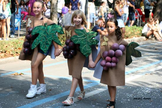 FESTA DELL'UVA 2012 ATRESCORE B. (BG) - Trescore balneario (1612 clic)