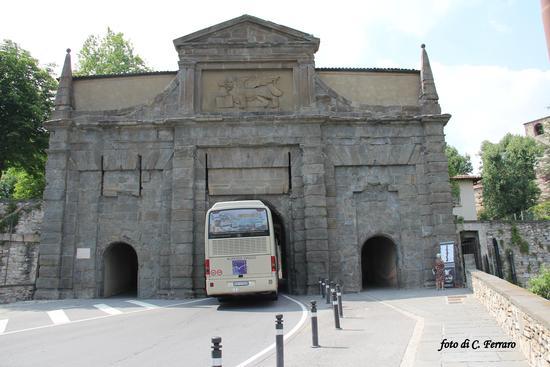 C'E' LA FARO' AD ENTRARE - Bergamo (1774 clic)
