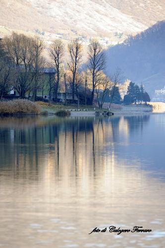 Riflessi sul lago di Spinone - Spinone al lago (891 clic)