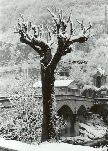 IL PONTE DEL BELLORA - Gazzaniga (1280 clic)