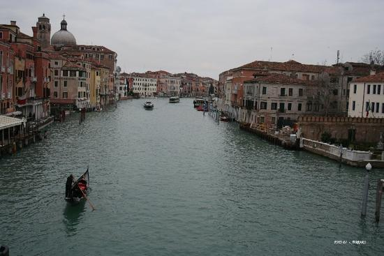VENEZIA CANAL GRANDE - Gazzaniga (1403 clic)
