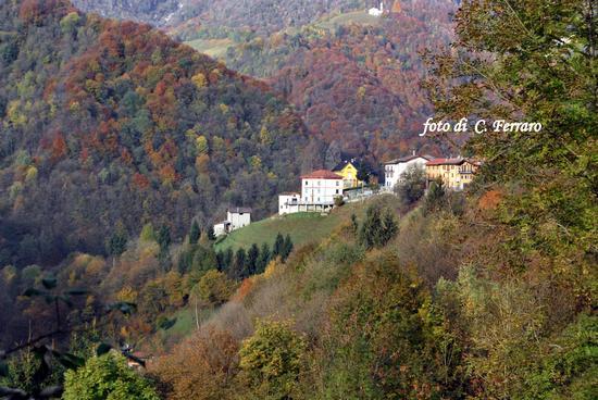 ONETA 2010    1 - Gazzaniga (1354 clic)