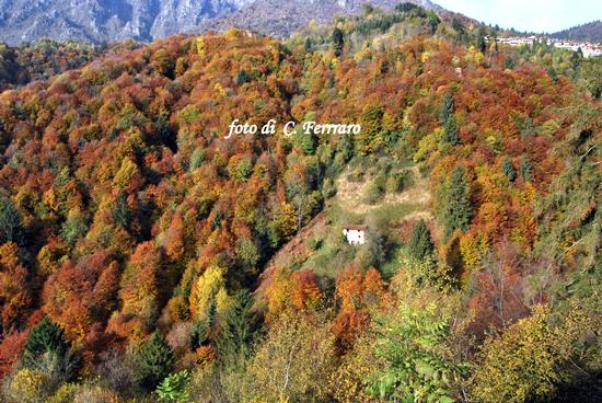 ONETA 2010  4 - Gazzaniga (1323 clic)