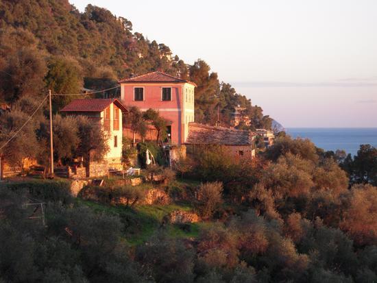 Borgo Antico -Abitazioni Rurali sul Golfo del Tigullio - Zoagli (2681 clic)