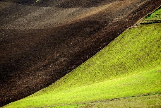 I colori dell'autunno - Caltabellotta (5890 clic)