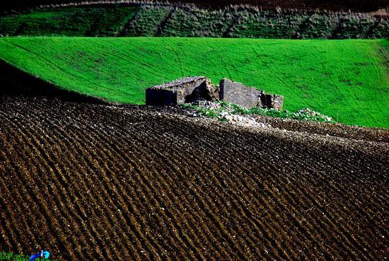 I colori dell'autunno - Caltabellotta (2830 clic)
