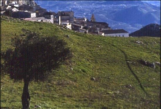 Panorama  - Caltabellotta (3303 clic)