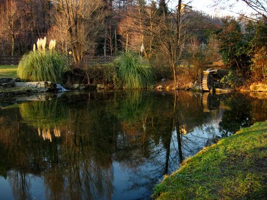 specchiandovi - Anzano del parco (2439 clic)