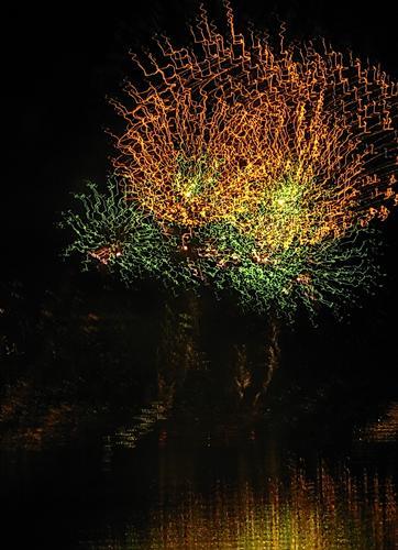 fuochi d'artificio a mano lbera bis - Pusiano (1048 clic)