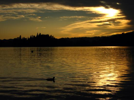 passeggiata al tramonto - Pusiano (2123 clic)