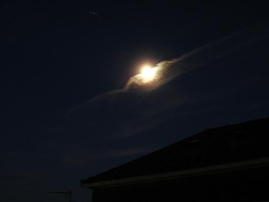 luna alata - CANTÙ - inserita il 02-Sep-11