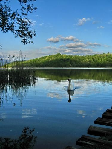 nuotando sulle nuvole - Anzano del parco (2436 clic)