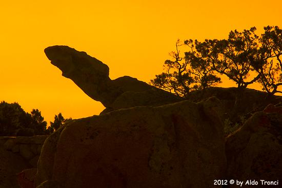 013/25. Golfo di Marinella: Graniti plasmati dal tempo, ovvero ... quando la natura si diverte - Porto rotondo (1121 clic)