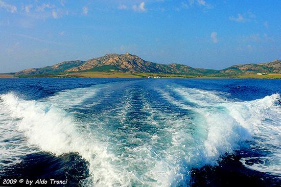Forme, Volti e Colori dell'Isola di Ercole - Asinara (826 clic)