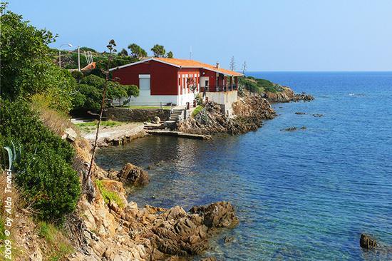 Forme, Volti e Colori dell'Isola di Ercole - Asinara (901 clic)