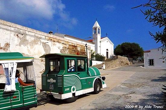Forme, Volti e Colori dell'Isola di Ercole - Asinara (714 clic)