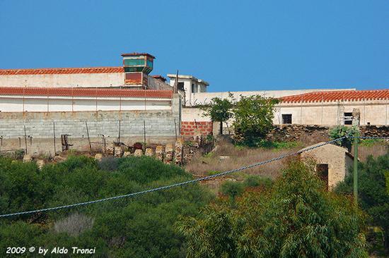 Forme, Volti e Colori dell'Isola di Ercole - Asinara (689 clic)