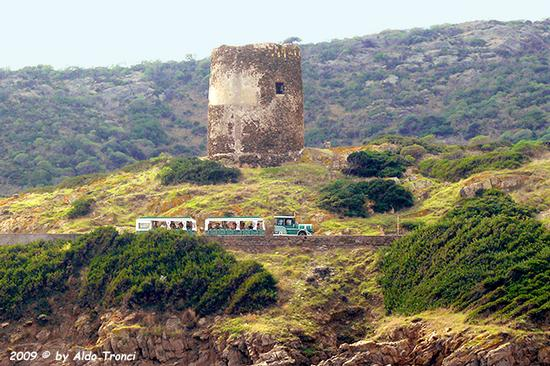 Forme, Volti e Colori dell'Isola di Ercole - Asinara (832 clic)