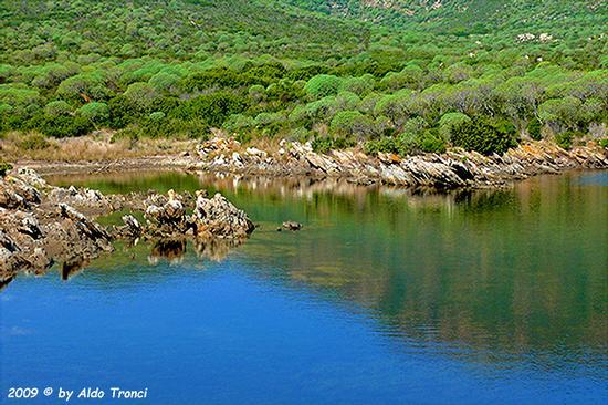 Forme, Volti e Colori dell'Isola di Ercole - Asinara (814 clic)