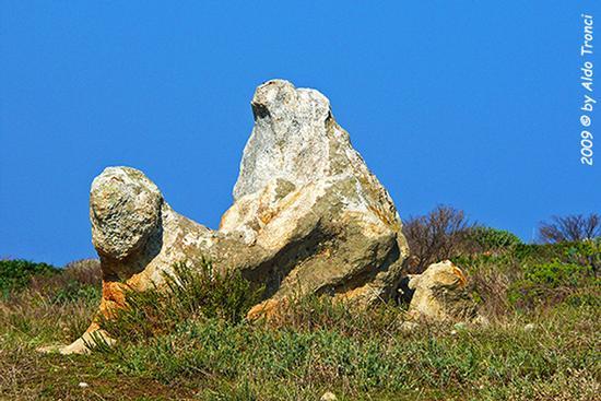 Forme, Volti e Colori dell'Isola di Ercole - Asinara (763 clic)