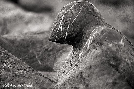 021/31 - Caorle: Sculture su pietra - CAORLE - inserita il 16-Feb-15